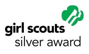 Image result for silver award project girl scouts